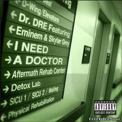 Dr. Dre feat. Eminem & Skylar Grey - I Need A Doctor (2011) MP3
