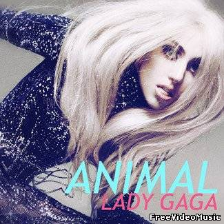 Текст и перевод песни Lady GaGa - Animal