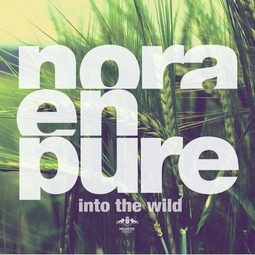 Текст и перевод песни Nora En Pure - U Got My Body